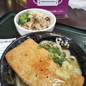 きつね+塩豚丼-100円