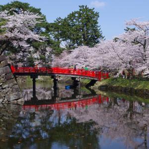 もう一度行きたい桜の名所【弘前城】(前編)
