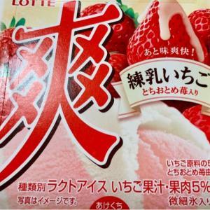 セブンで買った♪アイス~(*^^)v
