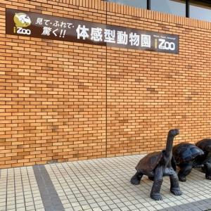 見て・触れて・驚く!!体感型動物園iZoo~(*´艸`)