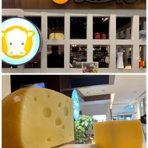 フラ友と♪チーズ料理専門店でランチ(*^^*ゞ