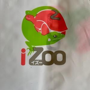 体感型動物園iZooで♪お買い物*\(^o^)/*