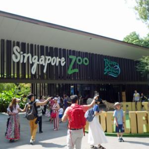 2019.07.14 シンガポール旅4日目(1) 動物園