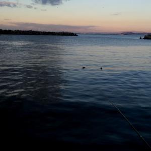散々な初釣り(-_-;)