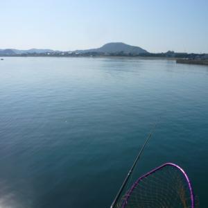 浮きフカセ釣りには厳しい季節到来