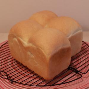 ふんわり濃厚食パン~ポロンの大好きな場所
