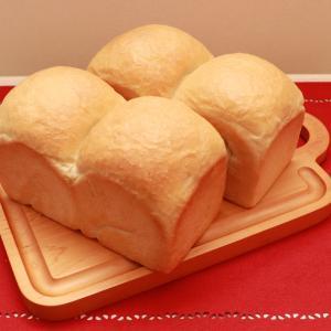ふんわり濃厚山食パン~イルミ楽しみながらイタリアン