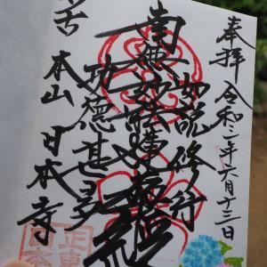 紫陽花を見るなら千葉の穴場スポット!日本寺ドライブコース♪