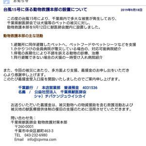 ★情報共有★台風15号に係る動物救護本部の設置について (千葉県獣医師会)
