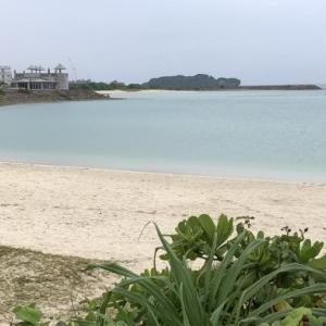 沖縄に来ています❗
