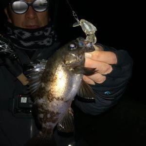 小さくても釣れると面白い