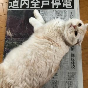 北海道胆振東部地震から3年が経ちました。