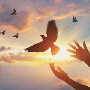 ●手放して新しい世界へ