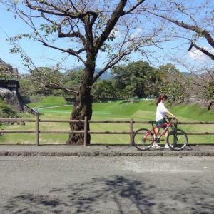 敬老の日と熊本城