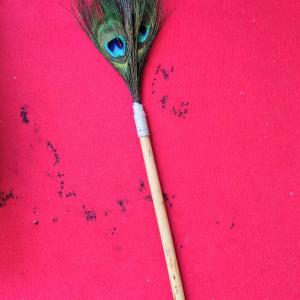 孔雀の羽で筆を作ったら