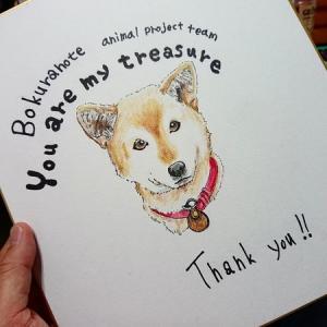 突然届いた封筒を開けてみると温かな雰囲気に!「ぼくらのて ~animal project team ~」の皆様より!