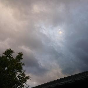 今朝、急に5℃も上がった朝の気温とまたまた上空に出始めた不思議な黒っぽい雲を見て不安に思った通りに・・・・
