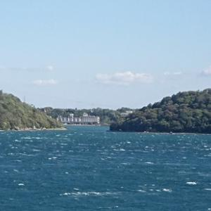 出張途中で寄った浜名湖サービスエリアの散歩道から見えた波の荒そうな浜名湖に驚き!先日乗ったパルチューを思い出す!