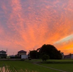 昨日から本日の空の変化に改めて不思議な気落ちに。怪しい飛行機雲から始まった真っ赤な夕焼けと朝の不気味な雲との関連は??