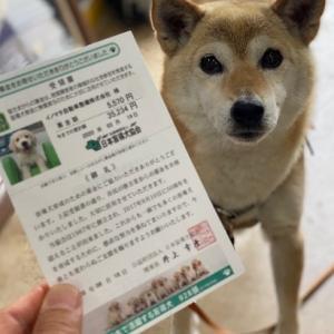 今年も個人的とは思えない金額を持って来て頂いたお巡りさんや皆様にご協力を頂いた募金を振り込んだ証が盲導犬協会から!