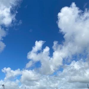 遂に私達の上空に出てくれた約3ヶ月ぶりの「本当に綺麗な澄んだ青空!」に興奮!迫力の入道雲と共に見て頂けましたか!!