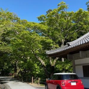 毎日空を眺めている私だから喜べたこと!先日用事があり行かせて頂いた法多山尊永寺さんで見れた綺麗な青空!そして・・・・・