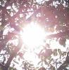 【18才未満閲読厳禁】全裸人妻10人!アサヒ芸能9/24,10/1合併特大号に付いていたDVD