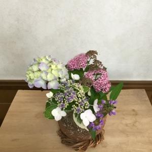 紫陽花と下野とウツボグサを