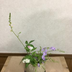 小さな花ですが