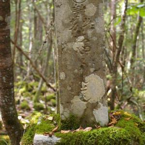 樹海の丸金石碑群について その2