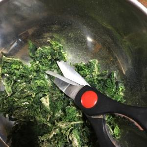 干したアナアオサを粉末にしよう。お茶挽き器ってどうなのかしら