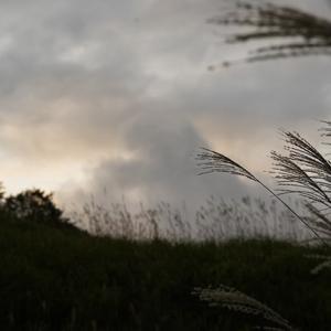 今日も不安定な天気 10月18日(金)曇り時々小雨