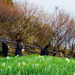 税務相談 1月26日(日)晴れのち曇り