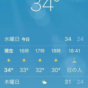 暑い(ー ー;)