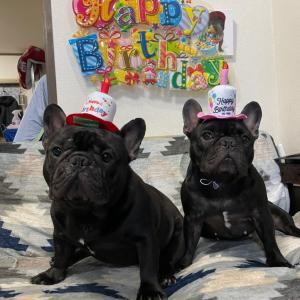 Happy birthday Gemma&Matthew
