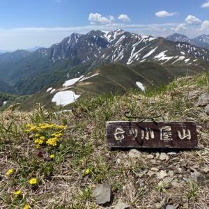 2020/5/30 大源太山から七ツ小屋山周回