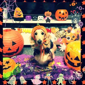 HAPPY Halloween でした〜♪