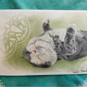 猫行脚21「まるちゃん」