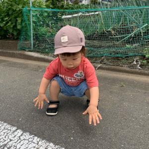散歩日和♡ナルミヤポチ