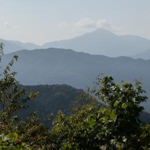 高尾山登ってきました その2