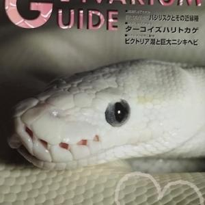新刊ビバリウムガイドは「かわいい爬虫類」