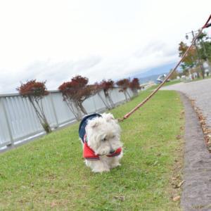 秋を探して〜洞爺湖編〜