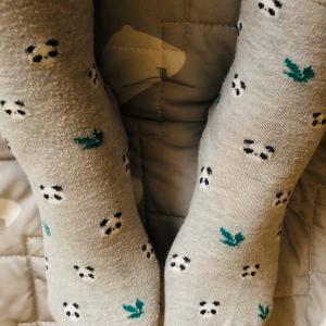 今日の靴下はあんまりおもんない