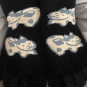 今日の靴下…コレハナンデスカ
