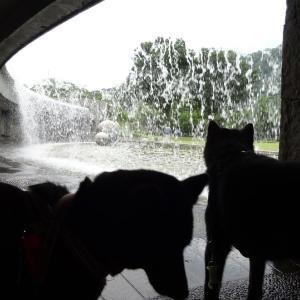 噴水の滝 水の苑地