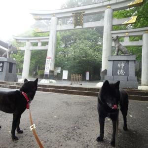 秩父・三峯神社