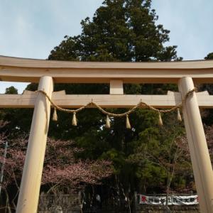 朝から戸隠神社中社に参拝