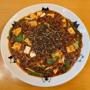 【大更新祭り】九条ねぎの麻婆豆腐を作ってみました