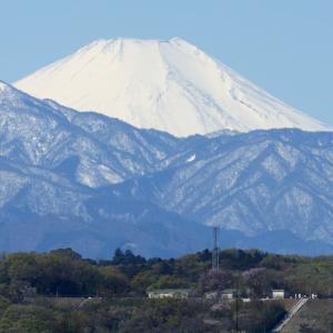 2019年4月の富士山