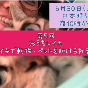 5/30(土)YouTube第5回おうちレイキ~レイキで動物やペットを助けられる?